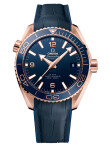 Omega - Planet Ocean 600m Co-Axial Master Chronometer